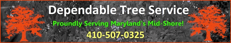 Dependable Tree Service Inc. - Click Here!