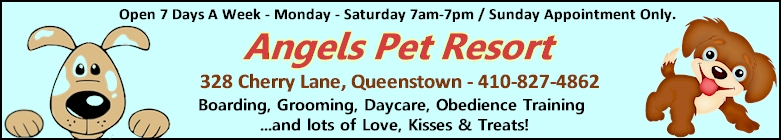 Angels Pet Resort Click Here